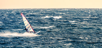 surfer Fotografia Stock