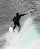 Surfer stock foto