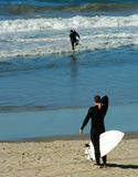Surfer Adjusts Wetsuit. On Southern California Beach Royalty Free Stock Images