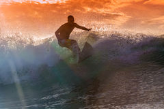 Surfer on Amazing Wave Royalty Free Stock Images