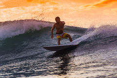 Surfer on Amazing Wave Royalty Free Stock Photography