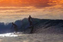 Surfer on Amazing Wave. At sunset time, Bali island Stock Photography