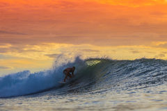 Surfer on Amazing Wave. At sunset time, Bali island Royalty Free Stock Photography