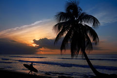 Free Surfer At Sunset Royalty Free Stock Photos - 5058238