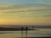 Surfer au coucher du soleil Photos stock