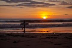 Surfer auf dem Strand von Santa Teresa beim Sonnenuntergang/bei Costa Rica stockbild
