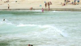 Surfer auf den Wellen stock footage