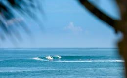 Surfer auf einer Welle in Bali Lizenzfreie Stockfotos