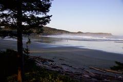 Surfer auf nebelhafter Cox-Bucht, Tofino, Britisch-Columbia, Kanada Stockfotografie