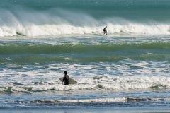 Surfer auf Piha-Strand, Neuseeland Stockfotos