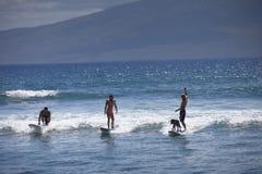 Surfer avec homme l'meilleur ami en Hawaï Photos libres de droits
