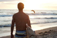 Surfer at the beach Royalty Free Stock Photos
