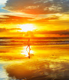 Surfer on a beach. Bali island Royalty Free Stock Images