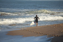 A surfer on the beach in Durban Royalty Free Stock Images