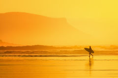 Surfer in the beach at sunset. Surfer in the beach at the sunset stock image