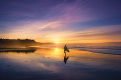 Surfer in the beach at sunset. Surfer in the beach at the sunset royalty free stock photography