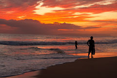 Surfer - Beach sunset - Kauai, Hawaii. Surfer silhouetted at Kekaha Beach sunset - West side of Kauai, Hawaii Stock Photo