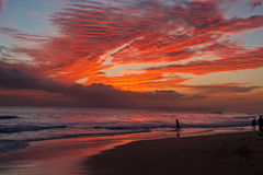 Surfer - Beach sunset - Kauai, Hawaii. Surfer silhouetted at Kekaha Beach sunset - West side of Kauai, Hawaii Stock Image
