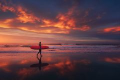 Surfer in the beach at sunset with red sky. Surfer in the beach at sunset with a red sky Stock Image