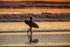 Surfer on the Beach at Sunset Tme. Bali, Indonesia Stock Photos