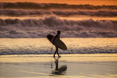 Surfer on the Beach at Sunset Tme. Bali, Indonesia Stock Photography