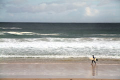 Surfer on a beach. Surfer walking along the beach waiting for waves Stock Images
