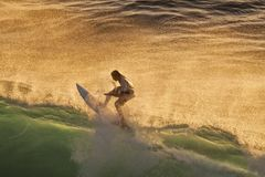 Surfer bei Sonnenuntergang an Honolua-Bucht auf Maui Lizenzfreies Stockfoto