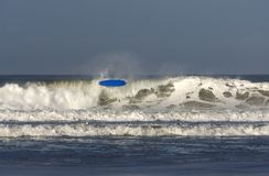 A surfer with a blue surfboard `wipes out`. In the waves at Porthtown, Cornwall, UK stock photography