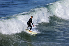 Surfer on the board Stock Photography