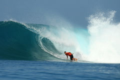 Surfer conduisant l'onde bleue, Mentawai, Indonésie photo stock