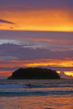 Surfer dans le paradis Photo libre de droits