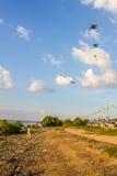 Surfer de cerf-volant de garçon Photos libres de droits