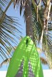 Surfer de loisirs Images libres de droits