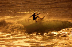 Surfer de mer image libre de droits