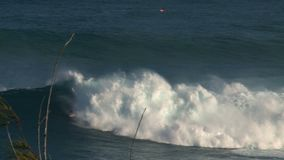 Surfer an den surfenden Bruchkiefern der großen Welle am Nordufer der Insel von Maui, Hawaii stock video footage