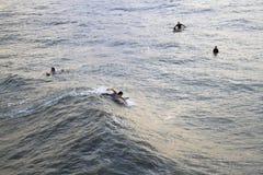 Surfer die een Golf paddelen te vangen Stock Foto's