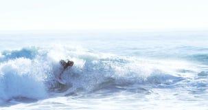 Surfer, die in Meer surfen stock video footage
