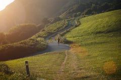 Surfer die omhoog een heuvel bij het winden van weg lopen Royalty-vrije Stock Foto