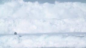 Surfer, die versuchen, Wellen zu fangen stock footage