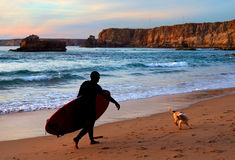 Surfer and dog Stock Photos