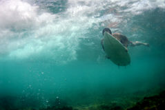 Surfer Duckdiving Photo libre de droits