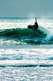 Surfer Dude Stock Photography