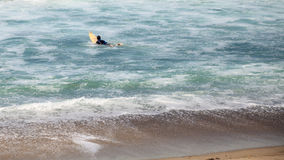 Surfer enjoys the waves of the ocean. In Southern California in summer Royalty Free Stock Images