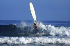 Surfer girl Stock Image