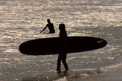 Surfer Girl. A silhouette of a female surfer during sunset stock photography