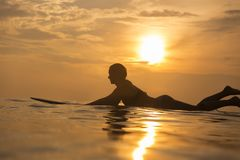 Surfer girl in ocean at sunset time stock image