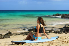 Surfer girl sitting on surfboard at beach Stock Photography