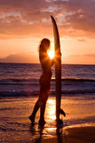 Surfer girl sunset Royalty Free Stock Photo