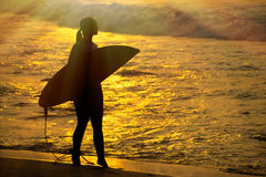 Surfer girl surfing looking at ocean beach sunset. Silhouette  w Royalty Free Stock Photos
