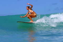 Surfer Girl Surfing a Wave in Hawaii stock photo